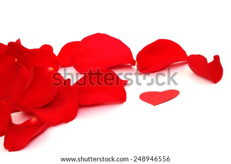 Rose petals and hearts isolated on white background with copy space - stock photo