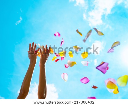 Rose petals falling from woman hands