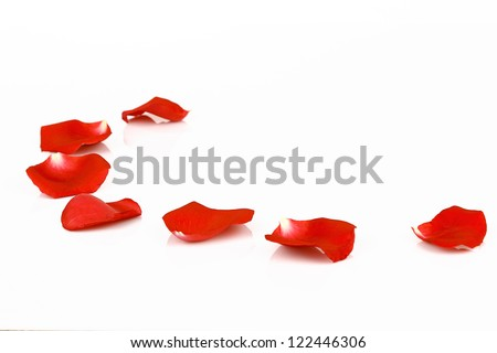 Rose petals isolated on white - stock photo