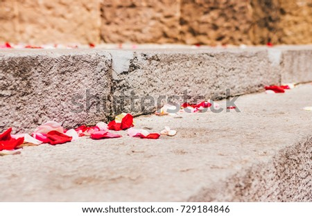 Rose petals on a old stone staircase.