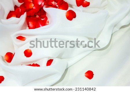 Rose petals on white fabric with background - stock photo