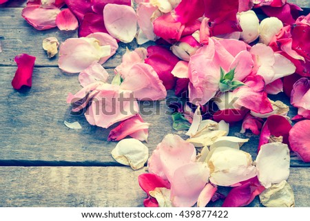 Rose petals/toned photo