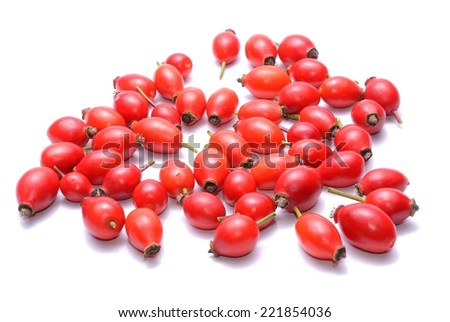 Rosehips isolated on white background - stock photo