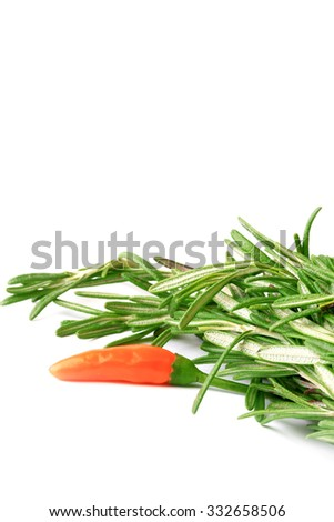 rosemary, chilli peppers isolated on white background - stock photo