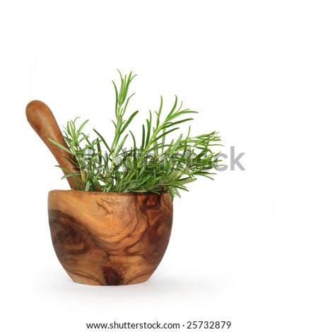 Rosemary herb leaves in an olive wood mortar with pestle over white background.