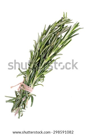 Rosemary Isolated on White Background - stock photo