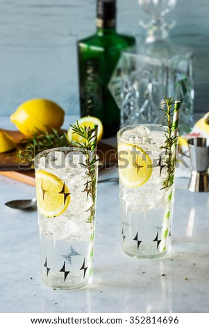 Rosemary Lemon Gin Fizz Alcoholic Cocktails in Glasses with Ingredients - stock photo