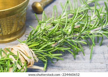 rosemary with mortar - stock photo