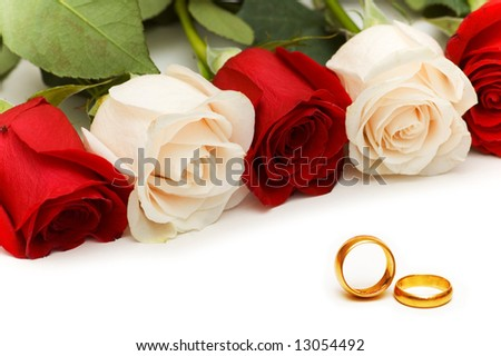 Roses and wedding rings isolated on the white - stock photo