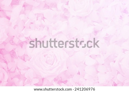 roses bouquet in  soft  color , for  background - stock photo