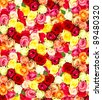 roses. colorful flowers wallpaper - stock photo