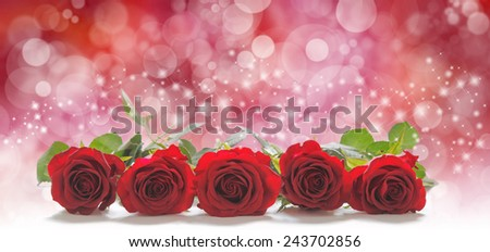 Roses for the people you love - Five red rose heads laid in a neat row with a red bokeh and sparkling glitter background and  plenty of copy space above - stock photo