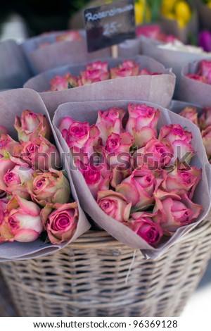 roses on flower market - stock photo