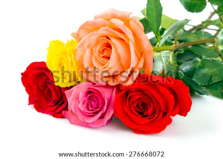 Roses over white background - stock photo