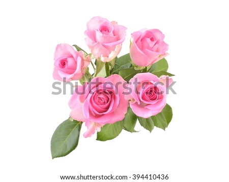 Roses. Roses of love. Photo of roses. Roses on white background. Beautiful pink roses. Roses gift. Pink roses on white, Bouquet of pink roses, with petals. Roses for mother. - stock photo
