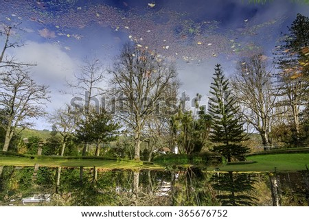 Rotated reflection of park with palms and pool on Azores