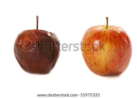 Rotten apple and fresh apple on a white background - stock photo