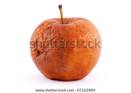 rotten apple isolated on a white background - stock photo
