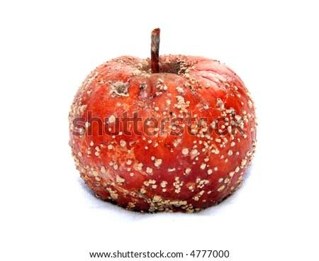 Rotten apple isolated on white. - stock photo