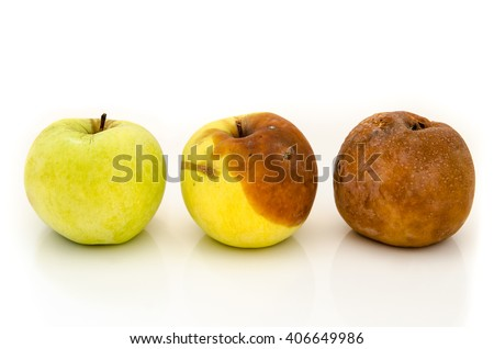 rotten apples isolated on a white background - stock photo