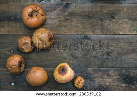 Rotten apples on wood. Day light - stock photo