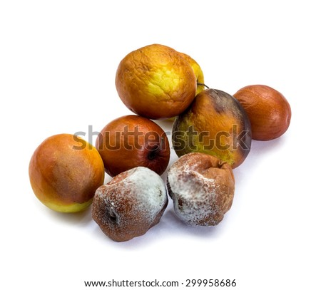 Rotten 'Monkey Apple' fruits on white background and clipping path - stock photo