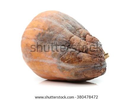 rotten pumpkin  - stock photo