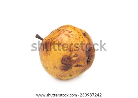 rotten snow pear on white background