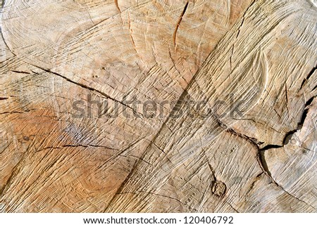 Rough wood  texture - stock photo