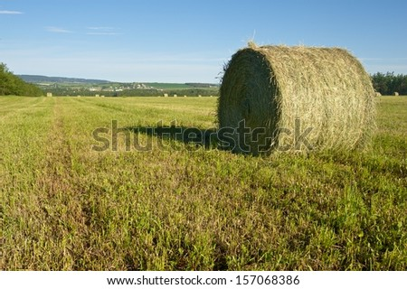 Round bale in field  - stock photo