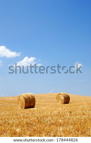 round bales in countryside under blue sky