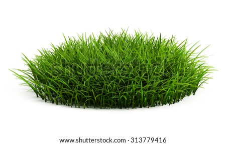 Round patch of fresh grass isolated on white - stock photo