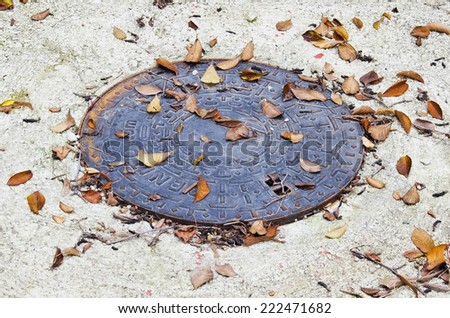 Round sewer manhole  with autumnal leaves . - stock photo
