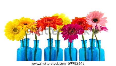 Row blue glass vases with colorful flowers isolated over white