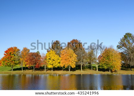 Row of Colorful Trees Along Lake in Autumn