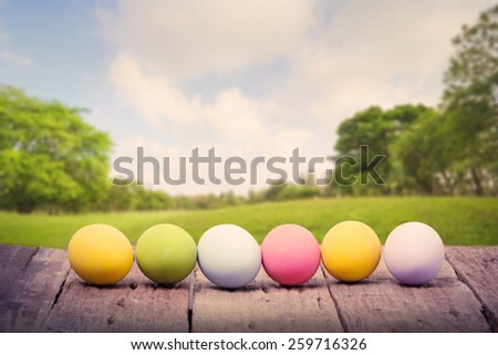 Row of Easter eggs on wood table in front green park - stock photo