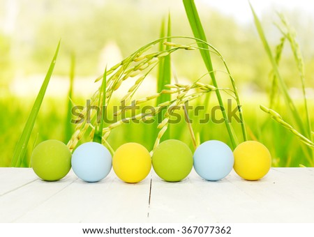 Row of Easter eggs on wood table in the rice field - stock photo