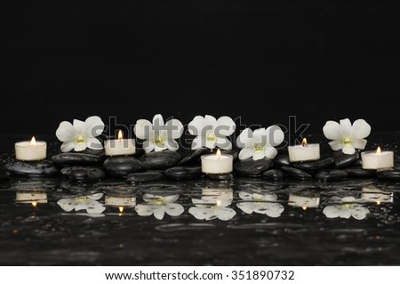 Row of five orchid with white candle therapy stones  - stock photo