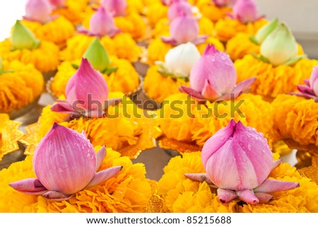 Row of lotus and yellow flower garlands on tray with pedestal in thai temple,Thailand.