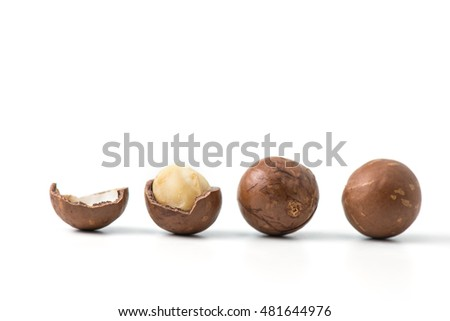 row of macadamia nuts on white background