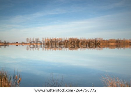 Row of trees reflected in a lake - stock photo