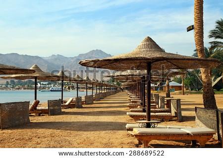 Row of umbrellas on beach - stock photo
