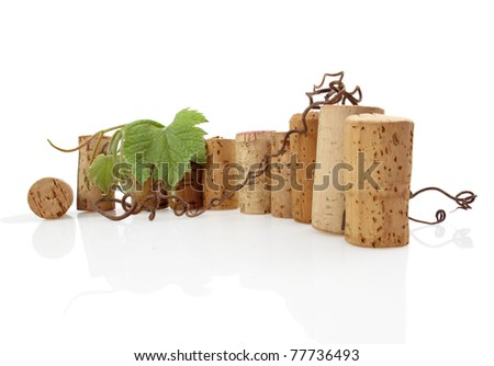 Row of wine bottle corks with grape leaves and tendrils on white