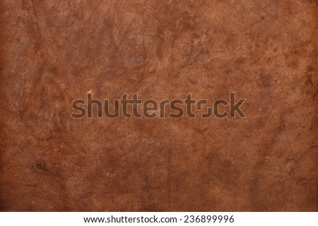 rown leather texture closeup background. - stock photo