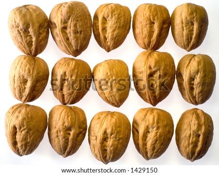 Rows of closed walnuts - stock photo