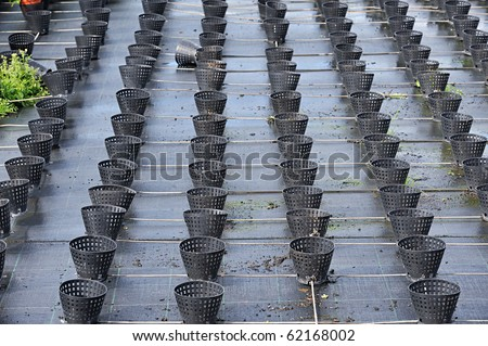 rows of empty flower pots in a plant nursery - stock photo