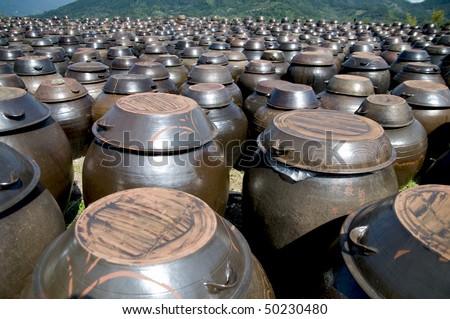Rows of pots used for the fermentation of Korean foods like Kimchi. - stock photo