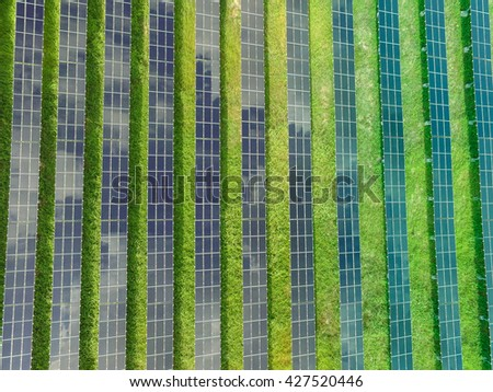 Rows of Solar Panels in Solar Farm Aerial View