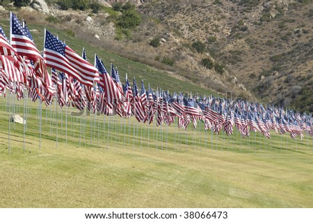 Rows of United States flags form an arc.