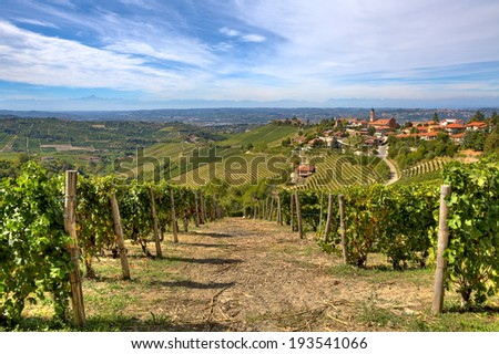 Rows of vineyards on the hills and small town on background under beautiful sky in Piedmont, Northern Italy. - stock photo